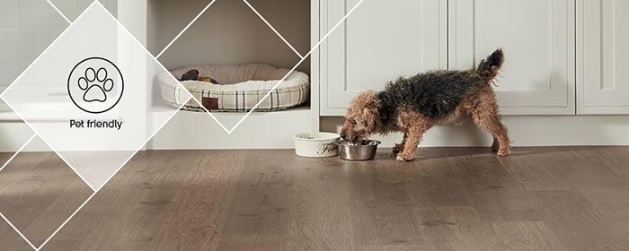 Karndea is a pet friendly floor